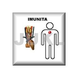 Bylinný čaj IMUNITA
